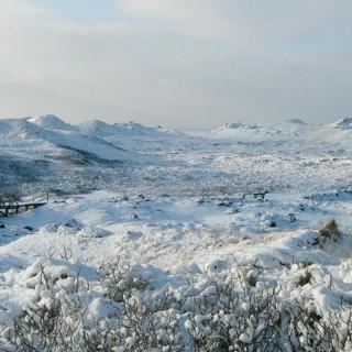 Amrum Winter Dünen Nordseeinsel